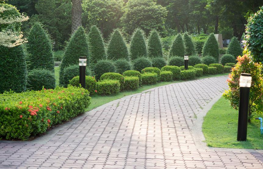 Création d'allée, plantations, entretien jardin, tailles de haie.